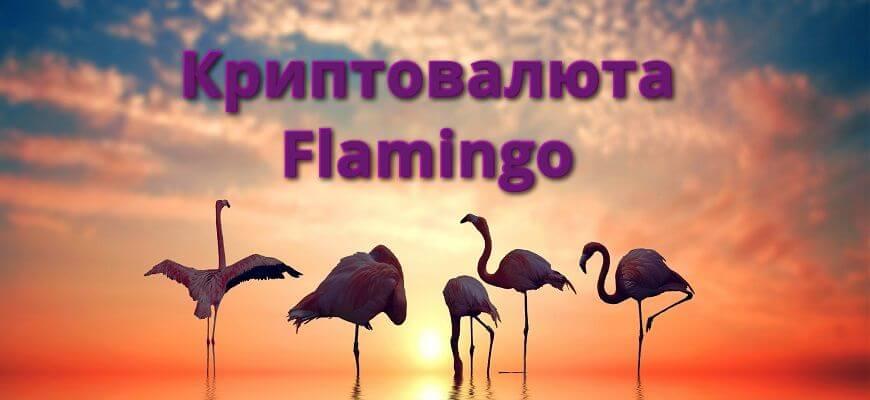 криптовалюта фламинго